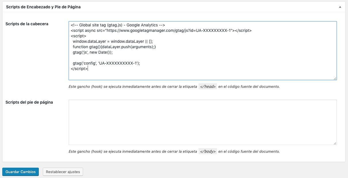 insertar código google analytics Genesis Framework