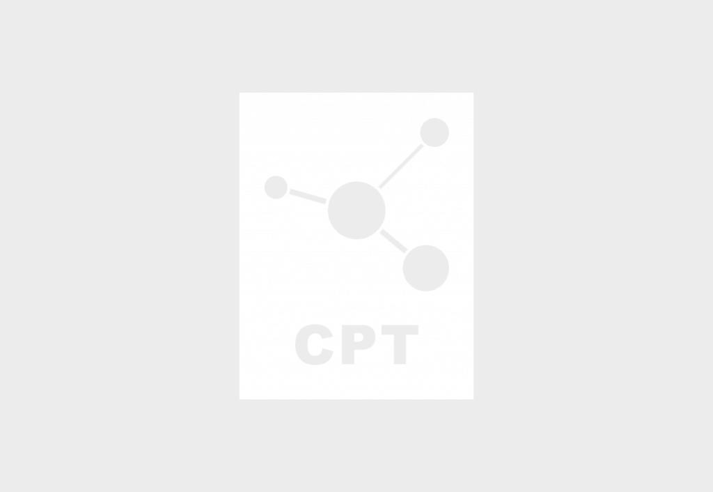obtener número entradas Custom Post Type usando REST API WordPress