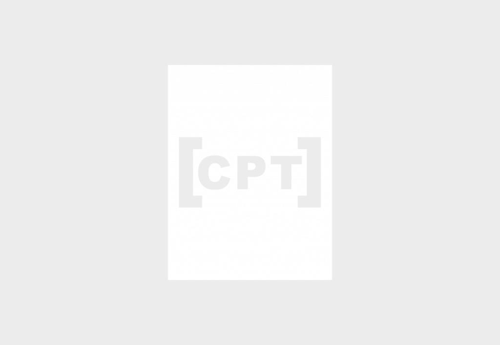 mostrar entradas CPT formato rejilla mediante shortcode